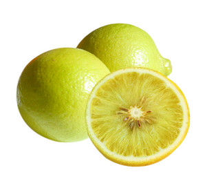 Bergamot Essential Oil Citrus bergamia