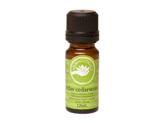 Cedarwood Atlas Cedrus atlantica 5ml - Organic