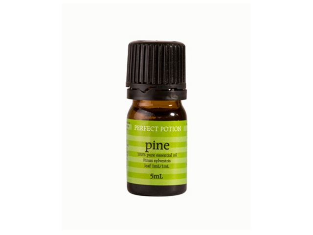 Pine, Scotch Pinus sylvestris 5ml