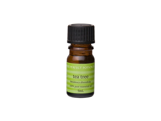 Tea Tree Melaleuca alternifolia 10ml - Organic