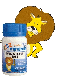 Kidz Minerals - Pain & Fever Ease