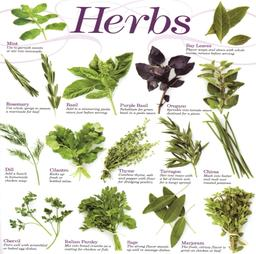 Amor Herbal Remedies